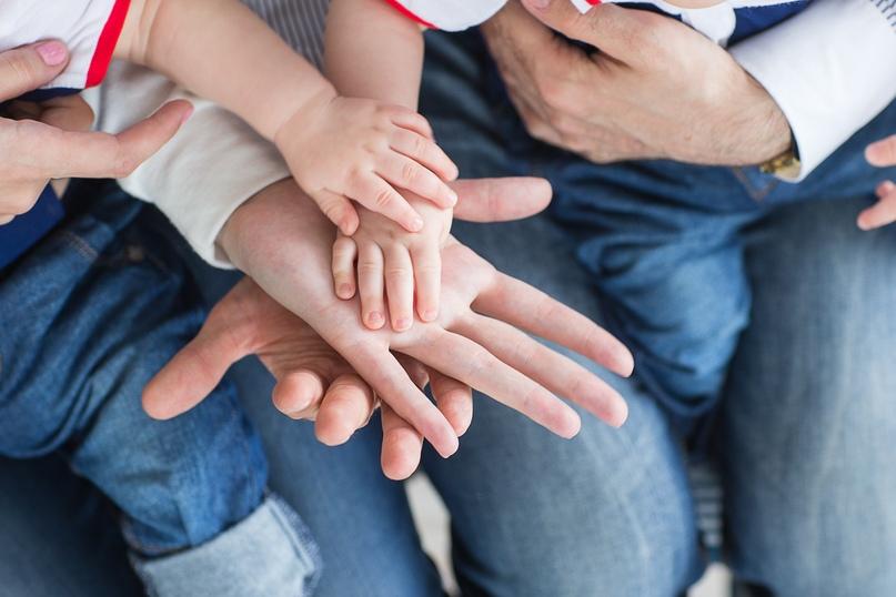 Прямая линия по мерам социальной поддержки семей с детьми, изображение №1