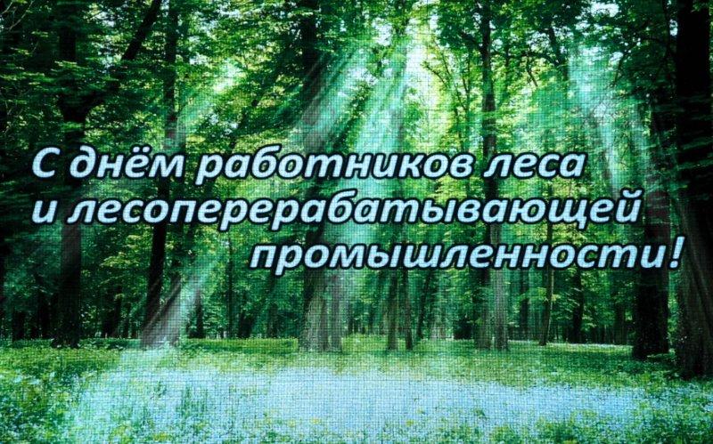 20 сентября – День работников леса и лесоперерабатывающей промышленности!