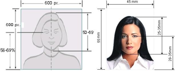Как заполнять Green Card – самая подробная инструкция, изображение №13