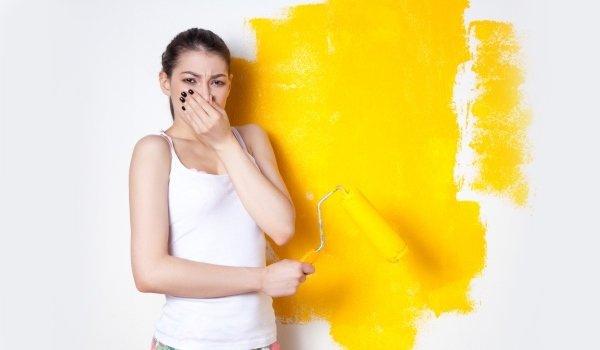 Как убрать запах краски в квартире?, изображение №3