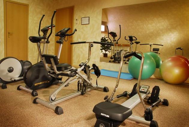 Обустройство спортивного зала в домашних условиях, изображение №2
